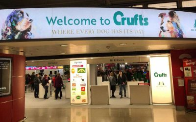 Crufts – the greatest (dog) show on earth!